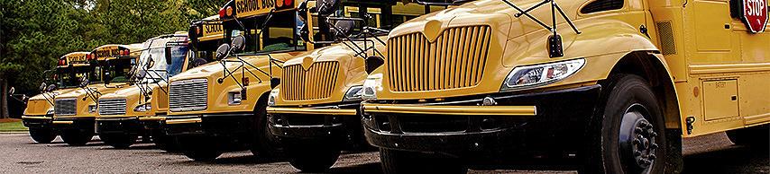 Six yellow school buses
